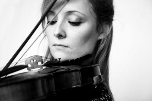 Free Folk Fiddle Taster